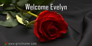 Welcome-Evelyn-Rose-Flower